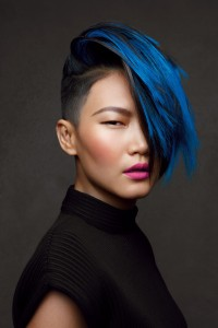 Schwarzkopf Looks 2013 Sleek Color Gwen Lu 1